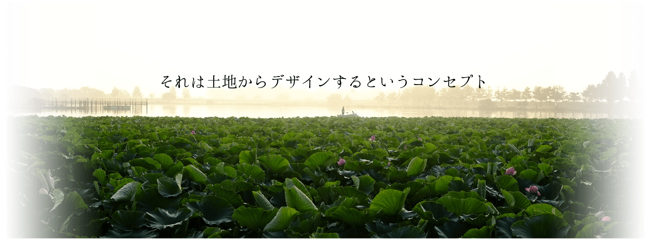 yhcgd_tls_01